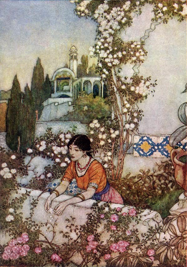 The Blowing Rose    Rubaiyat  Edmund Dulac illustration