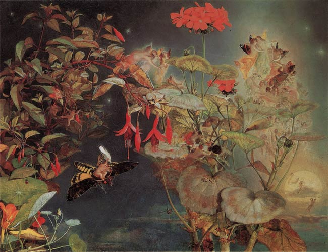 Naish - Midsummer Fairies