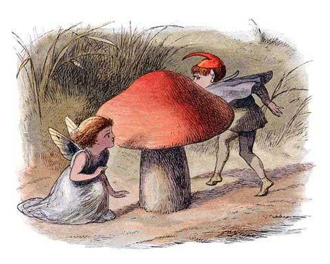 Elf and Fairy