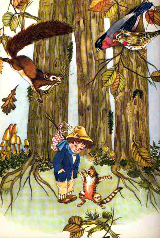 Jack and His Cat   Catherine and Her Wolf  My Big Book of Cat Stories The Golden Bird  Adrienne Segur illustration