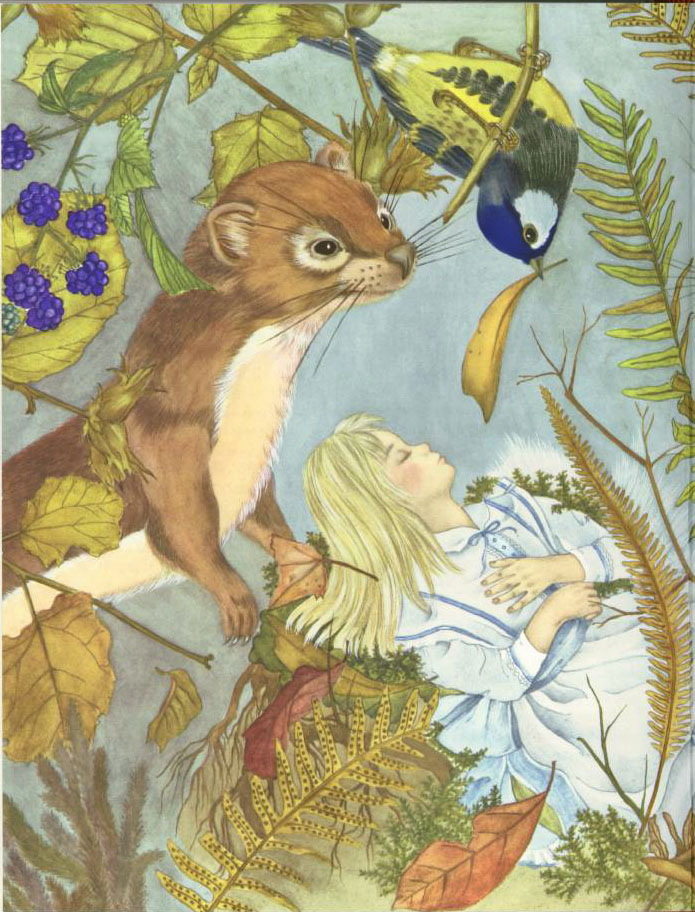 Thumbelina and the Squirrel  The Red Shoes  Adrienne Segur illustration