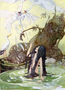 Anne Anderson illustration to Hans Christian Andersen Fairy Tales, The Marsh King's Daughter