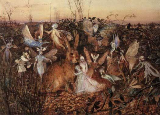 Rabbit among the Fairies
