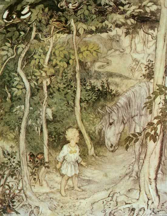 Arthur Rackham illustration
