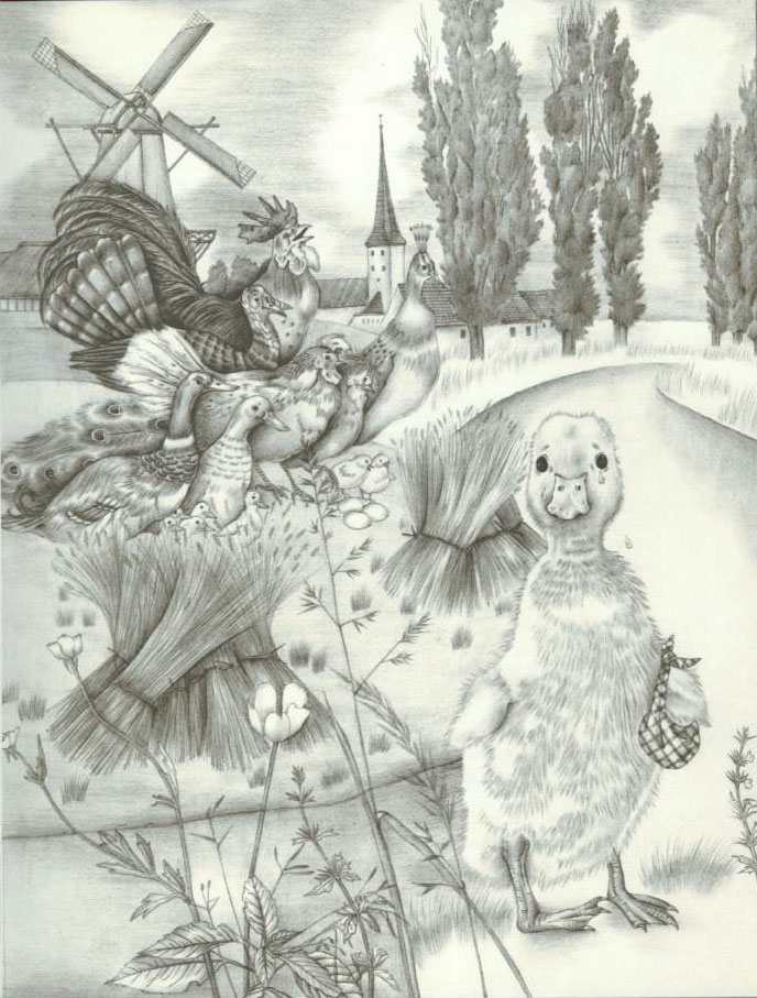 Adrienne Segur illustration